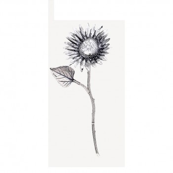 Girasole argento cm. 9,5
