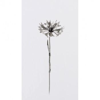 Fiordaliso argento cm. 12,5
