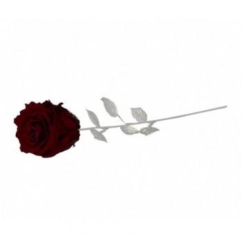 Rosa naturale con stelo e foglie argentate Mod. 1/BG art. 1899-30BO