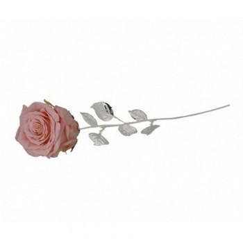 Rosa naturale con stelo e foglie argentate Mod. 1/BG art. 1899-30 RC